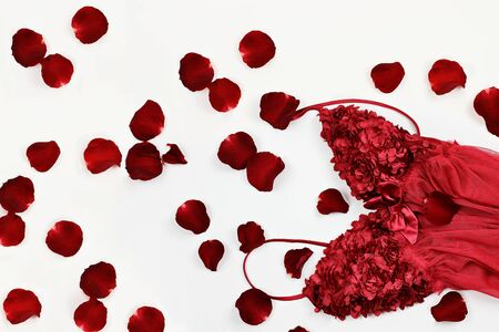 red lingerie: Beautiful red lingerie surrounded by rose petals for Valentines Day. Stock Photo