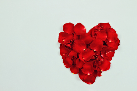 Red rose petals against a blue background with room for copyspace.