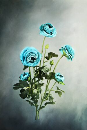 Digital painting of beautiful blue Ranuculus flowers. Stock Photo