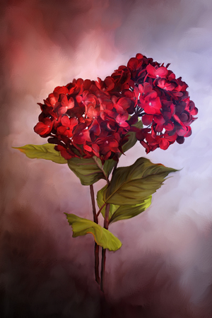 bigleaf hydrangea: Digital painting of beautiful red hydrangeas. Stock Photo