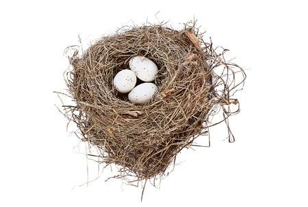 Nido de aves aisladas con huevos manchados sobre fondo blanco. Imagen tomada desde arriba con espacio de copia. Foto de archivo - 76529383