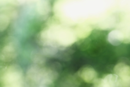 Abstract background of blurred circular green bokeh circles for summer backgrounds.