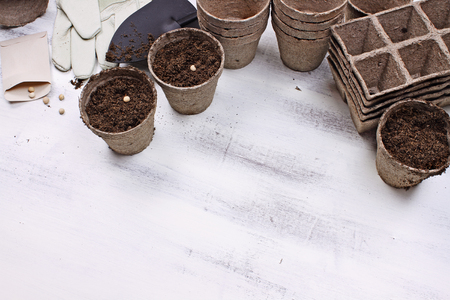 Gardening tools, seeds and soil on a white wooden table. Image shot from above in flat lay style. Stock Photo