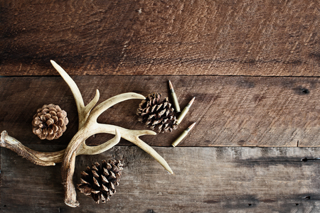 Real white tail deer antlers used by hunters when hunting to rattle in other large bucks over a rustic wooden table with pine cones and .308 rifle shells. Free space for text.
