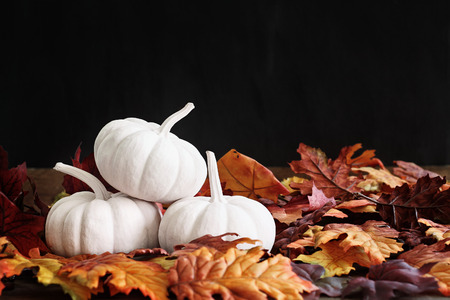 Fall leaves scattered around a stack of three white pumpkins. Extreme shallow depth of field with selective focus on pumkins. Free space for text. Stock Photo