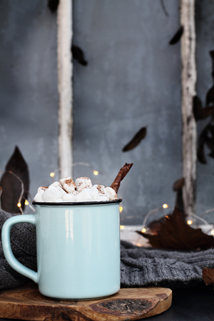 Blue and black enamel cup of hot cocoa with marshmallows and cinnamon bark in front of a dark window. Extreme shallow depth of field with focus on drink.