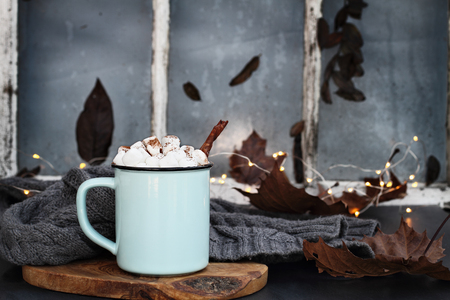 Blue and black enamel cup of hot cocoa with marshmallows and cinnamon bark in front of an old window. Extreme shallow depth of field with focus on drink.