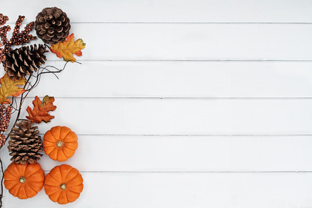 Rustic fall background of autumn leaves, pine cones and mini pumpkins with free copy space for text over a white rustic background. Image shot from overhead. Stock Photo