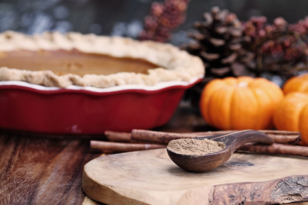 Pumpkin pie spice measured in a wooden spoon over a rustic wooden background. Pie and pumpkins in the background. Extreme shallow depth of field with selective focus on spice.