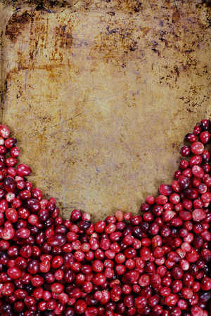 Fresh cranberries against rustic metal background for room for text for Thanksgiving Day. Top view. Stock Photo