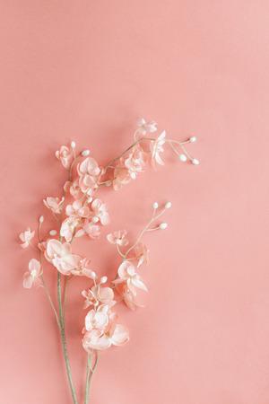 Schöne rosa Blumen über einem rosa Hintergrund mit Kopienraum für Ihre Textdraufsicht. Flach liegen.