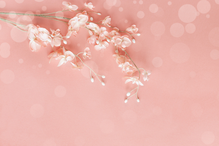 Beautiful pink flowers over a pink bokeh background with copy space for your text top view. Flat lay. Stock Photo