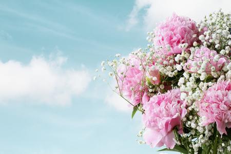 Las flores de Pink Peonies y Baby's Breath contra un hermoso cielo primaveral con espacio para copiar el texto. Foto de archivo