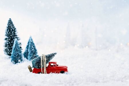 1950s antique vintage red truck hauling a Christmas tree home through a snowy winter wonder land. Extreme shallow depth of field with selective focus on vehicle.