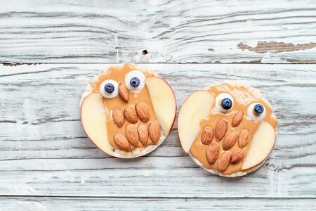 Funny food for kids. Rice cakes in the shape of owls lying on a rustic white table. Owl is made from peanut butter, apple slices, almonds, candy and blueberries. Top view, flay lay position.