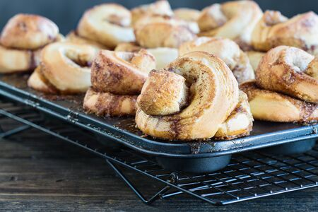 Fresh made homemade tall cinnamon rolls still in the muffin tin over a rustic wood table. Extreme selective focus on bun in the foreground with blurred background.