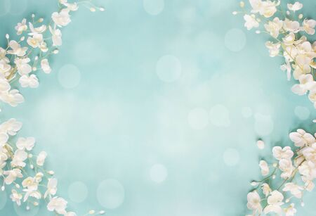 Beautiful and peaceful spring flower blossoms and blurred bokeh against a blue background.Image shot from top view. Stockfoto
