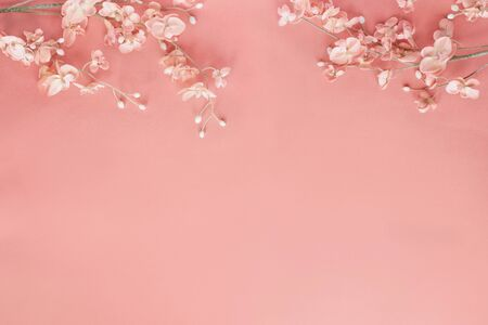 Beautiful and peaceful spring flower blossoms against a coral colored background. Image shot from top view.