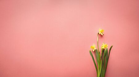 Pastel Easter eggs and white flower blossoms over a coral background with room for copy space. Image shot from top view. Stockfoto