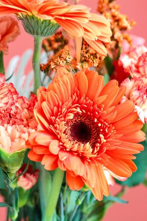 Selective focus of a beautiful coral colored Gerbera Daisy among other like colored flowers such as Carnations and Statice. Blurred background.  Stockfoto