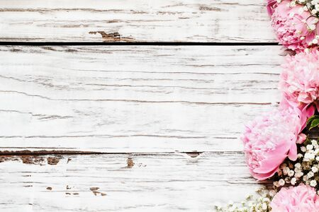 Top view of pink Peonies and Babys Breath flowers over a white rustic wood table background  with free space for your text. Flatlay.