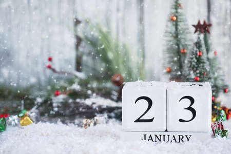 White wood calendar blocks with the date January 23rd and Christmas decorations with snow. Selective focus with blurred background.