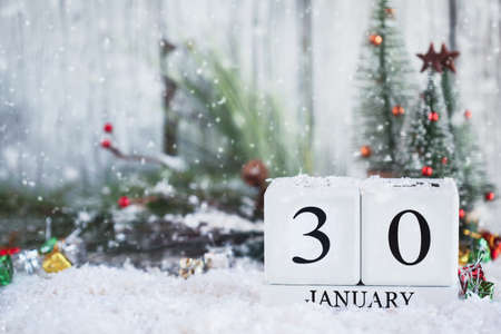 White wood calendar blocks with the date January 30th and Christmas decorations with snow. Selective focus with blurred background.