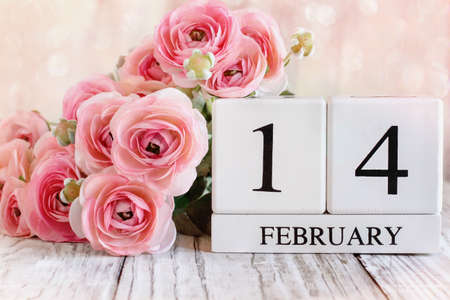 White wood calendar blocks and pink ranunculus with the date February 14 for Valentines Day. Selective focus with a blurred background. Stockfoto