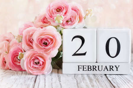 White wood calendar blocks with the date February 20th and pink ranunculus flowers over a wooden table. Selective focus with blurred background. Stockfoto