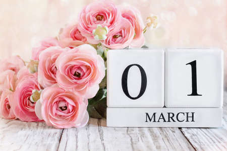 White wood calendar blocks with the date March 1st and pink ranunculus flowers over a wooden table. Selective focus with blurred background. Stockfoto