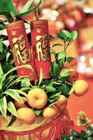 lime tree: Lime tree with Chinese New Year Decoration