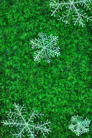 Snow Flakes Decoration for Christmas Stock Photo - 16849155