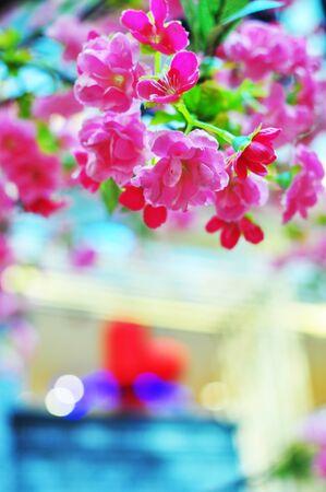 Pink Cherry Blossom Chinese New Year Stock Photo