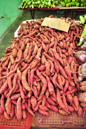 Tapioca Roots for sale in Farmers Market