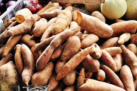 Brown Tapioca Roots for sale Stock Photo