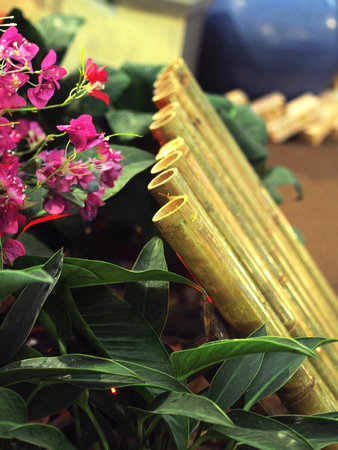 Lemang in bamboo to served with curry rendang malaysian food