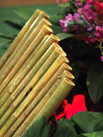 Closeup shot of lemang in bamboo