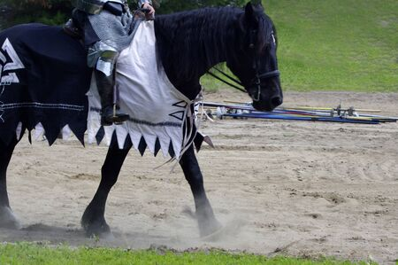 blanket horse: Black horse dressed in medieval blanket walking in dust