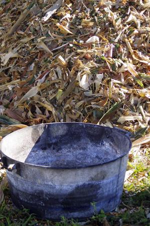husks: metal bucket by pile of corn husks