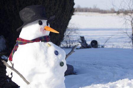 Late Winter Snowman profile in sunshine