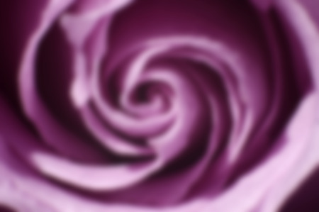 Out of focus purple rose swirl background