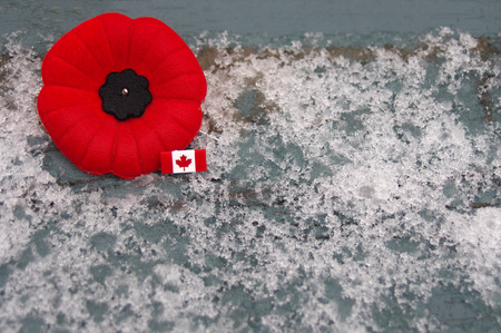 Red poppy pin with Canada pin on spotty snowy background Stock Photo