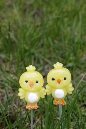 Two candy lollipop chicks on a green grass background with copy space