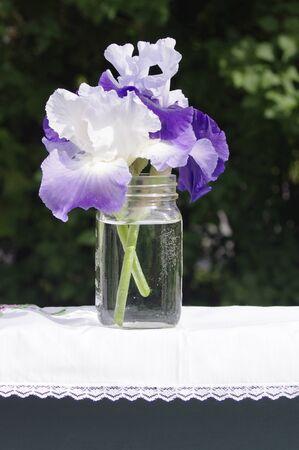 purple irises flowers in mason jar outside in sunshine Stok Fotoğraf