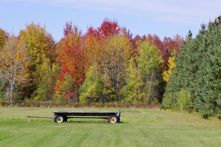 wooden hay wagon in field with autumn leaves in sunshine Stok Fotoğraf - 143610455