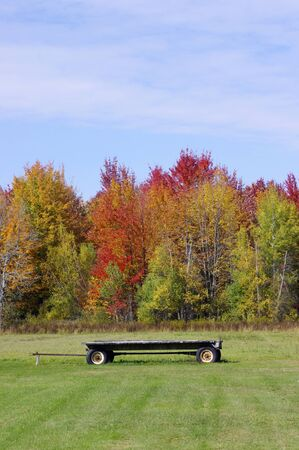 wooden hay wagon in field with autumn leaves in sunshine with copy space Stok Fotoğraf - 143403187