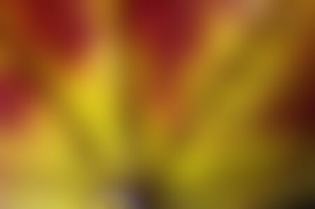 red yellow fan abstract background Stok Fotoğraf - 143695650