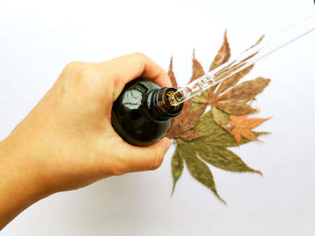 Selective focus hand holding a bottle of CBD oil and hemp oil with pipette on leaves white background, marijuana extract 版權商用圖片