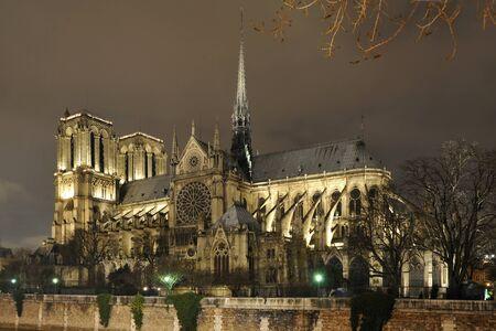 Notre Dame de Paris at night Stock Photo - 14239968