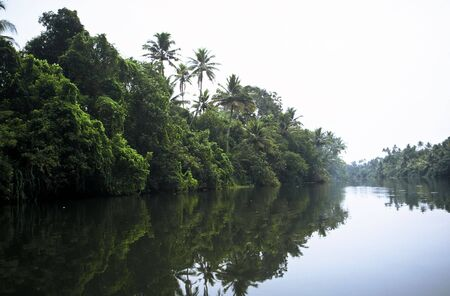 backwaters: Backwaters in Kerala Province in the south of India